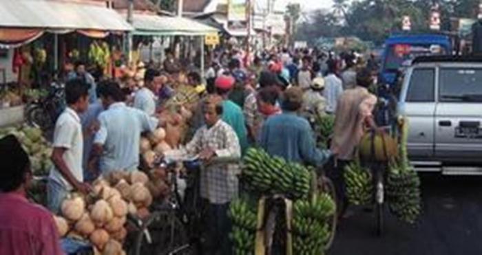 Melimpah, Harga Kelapa di Pasar Ranuyoso Anjlok