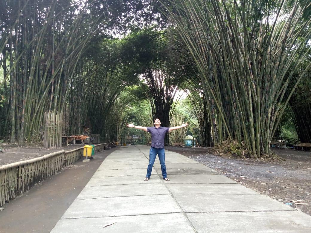 Nikmatnya Berburu Swafoto di Hutan Bambu Semeru