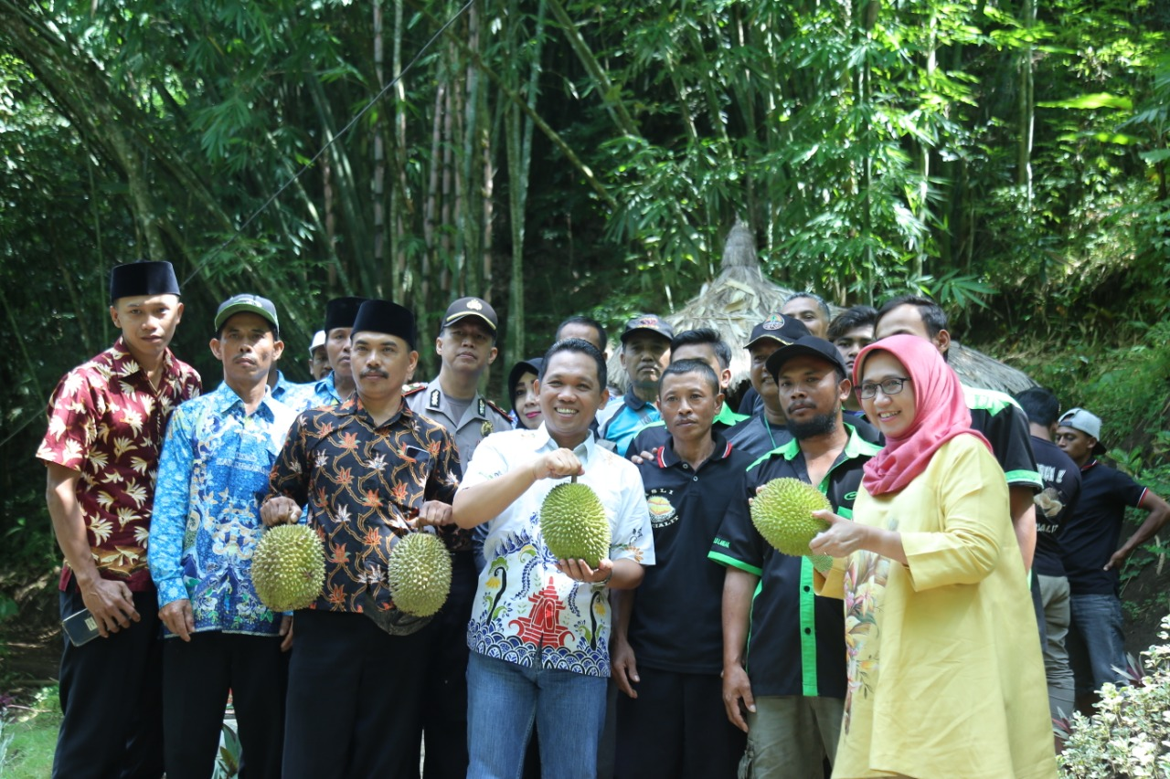 Cak Thoriq Kenalkan Durian Gucialit Sebagai Potensi Lumajang