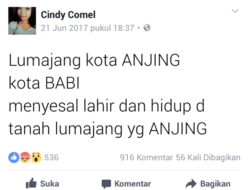 Buat Status Tak Senonoh, Pemilik Akun FB Cindy Comel Diperiksa Polisi