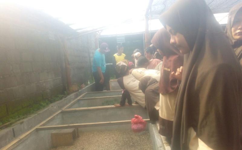 Puluhan Siswa SDIT Yosowilangun Lakukan School Visit ke Wisata Edukasi Alas Semeru