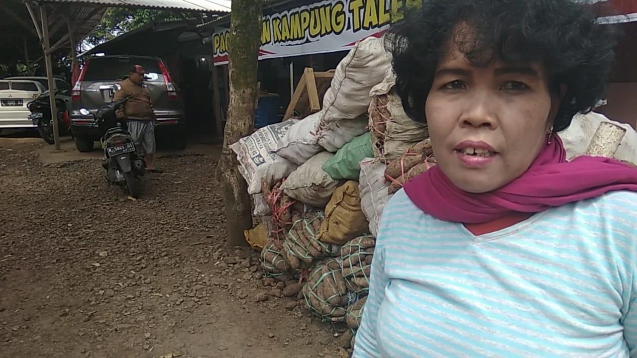 Sang Ratu Talas Lumajang Jadi Pemasok Pabrik Makanan Raffi Ahmad