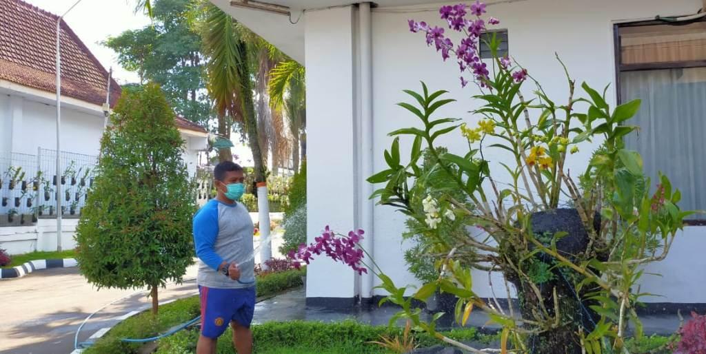 Warna Warni Bunga Anggrek Hiasi Halaman DPRD Lumajang