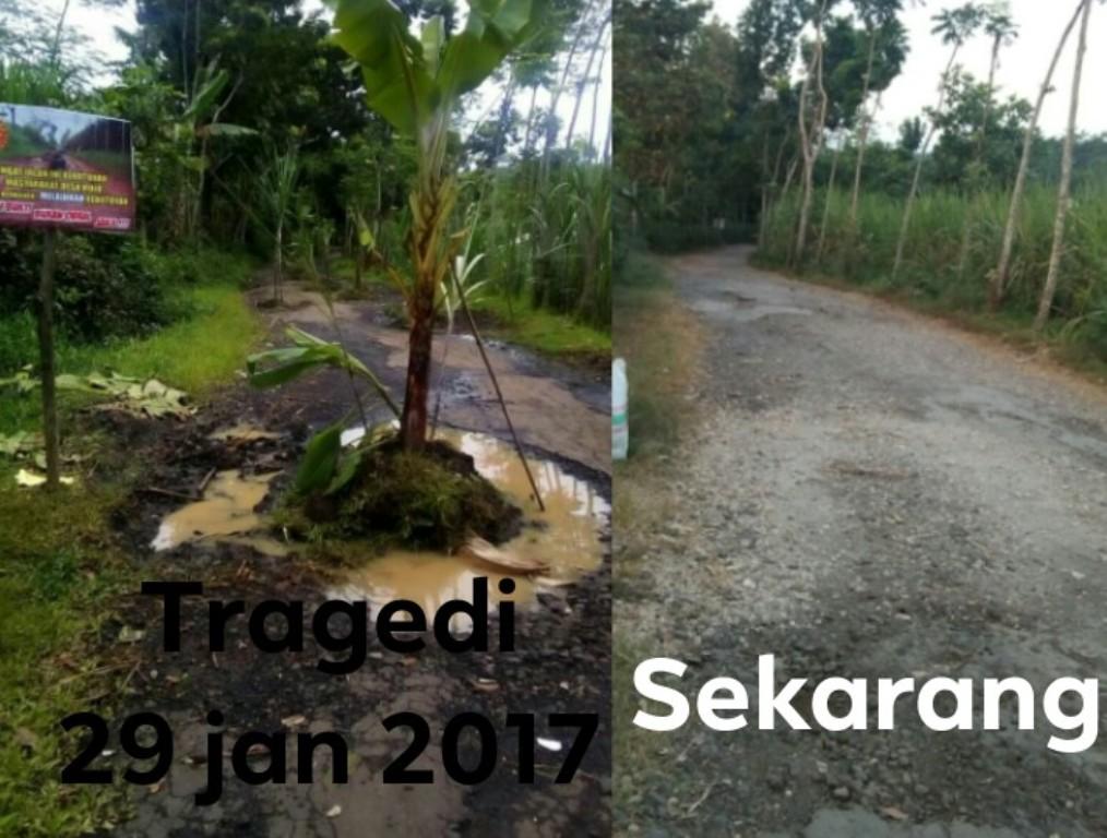 Warga Mojo 2017 Pernah Tanam Pisang di Tengah Jalan Rusak