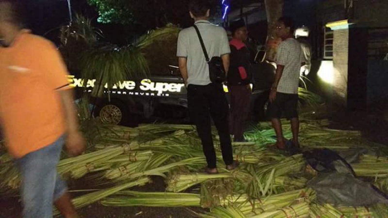 1 Tewas, Pick Up Angkut Janur Tabrak Pohon Pinggir Jalan