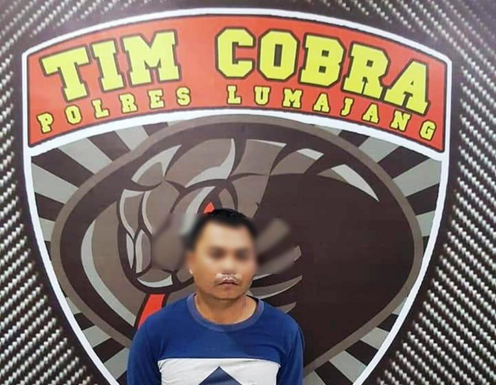 Oknum Tim Katak PNS DLH Diringkus Tim Cobra Lumajang