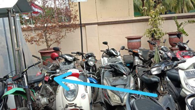 Ada Motor Plat Merah Disita Polisi dari Arena Sabung Ayam Lumajang