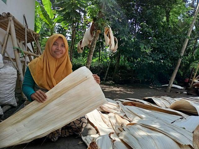 Wow..! Warga Klakah Lumajang Raup Untung Jutaan dari Pelepah Pinang