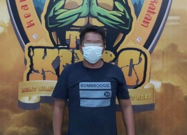 Pencuri Kayu Jati di Hutan Pasirian Lumajang Digrebek Polisi