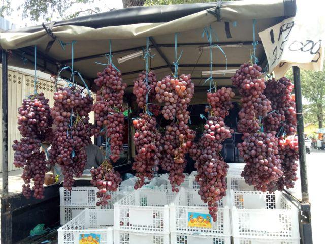 Anggur Impor Asal Cina Serbu Kabupaten Lumajang