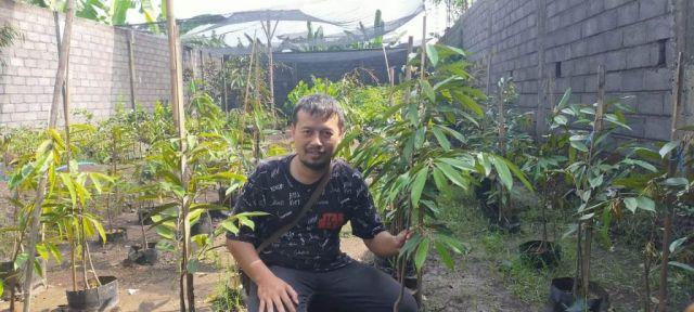 Bengawan Argo Lumajang Jual Bibit Durian dan Buah Berkualitas