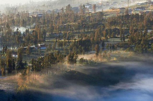 Kebangkitan Negeri Khayangan Cemoro Lawang Ancam Wisata Lumajang