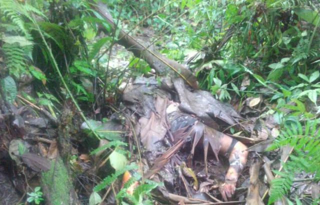 Warga Heboh Penemuan Mayat Perempuan di Hutan Burno Senduro