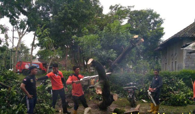 Angin Puting Beliung Rusak 12 Rumah Warga Tekung