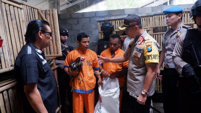 2 Spesialis Maling Ayam Jokarto Dikeler Saat Beraksi di Besuk - Tempeh