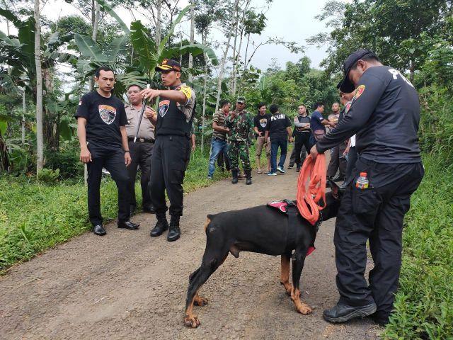 Gilaa..! Kapolres Lumajang Kejar Maling dan Sapi Warga Klakah Ditemukan di Probolinggo