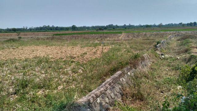 Hampir Setahun, Dua Desa di Kota Lumajang Kekeringan dan Kesulitan Air Bersih