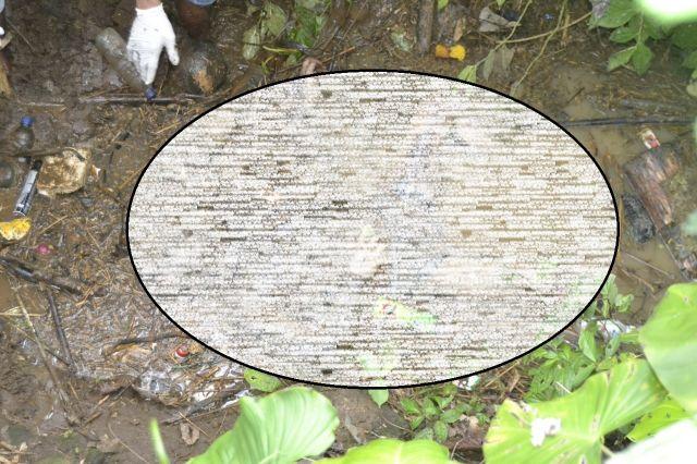 Buari Ditemukan Tewas Membusuk di Kebun Desa Bedayutalang