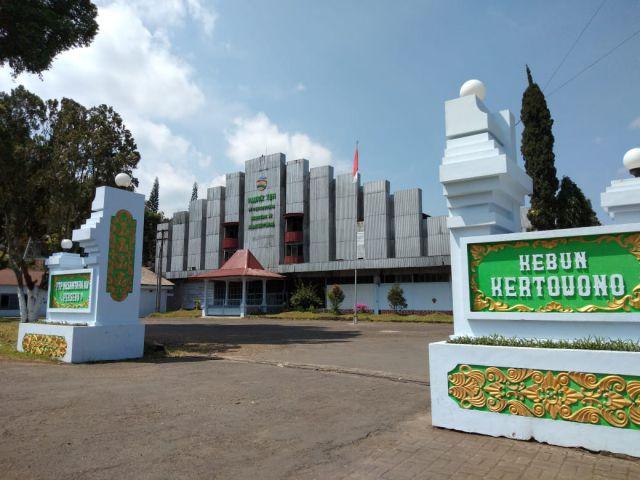 Gagahnya, Rumah Afdeling dan Pabrik Teh Kolonial Sejak 1910 di Gucialit - Lumajang.