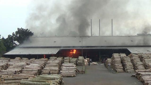 Si Jago Merah Lalap Pabrik Kayu Besuk Hingga Karyawan Jadi Korban