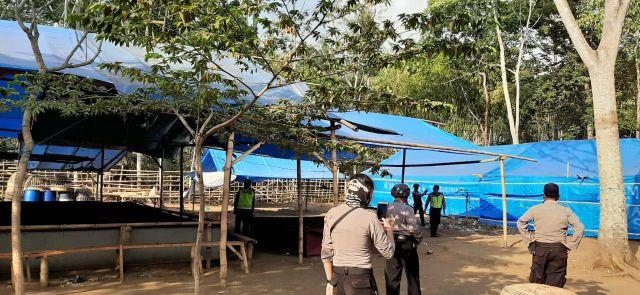 Tim Cobra Lumajang Bersama Brimob Grebek Arena Judi Sabung Ayam Klakah