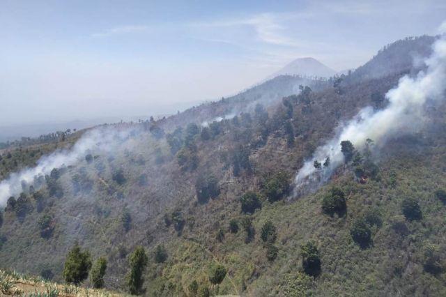 Kawasan Hutan Wisata B 29 Kampung Nirwana Kembali Terbakar