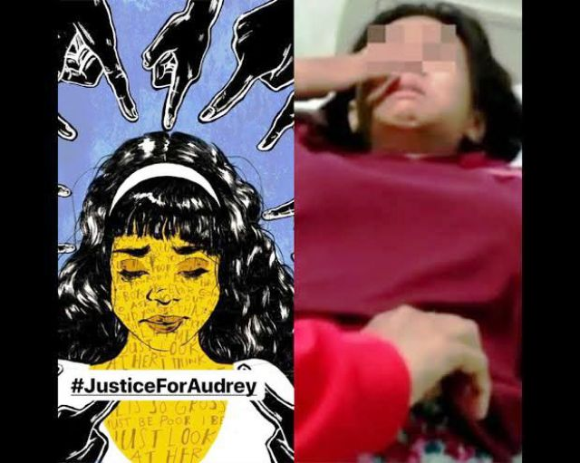 DPP HMPI Bereaksi Atas Kasus Bullying Audrey