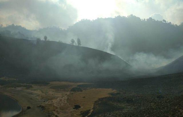 Petugas Berjibaku Padamkan Api di Lereng Gunung Semeru
