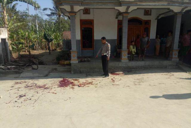 Aksi Carok Sadis Didepan Rumah Warga Ranuyoso-Lumajang