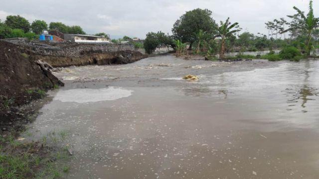 Tak Sampai Setahun Dam Gambiran Lumajang Kembali Jebol Diterjang Banjir
