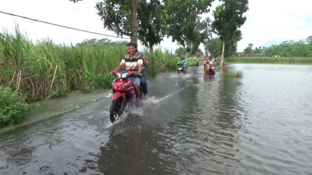 Ratusan Hektar Lahan Pertanian Terendam Luapan Sungai Tandak Lumajang