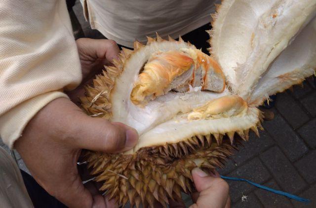 Lumajang Mencari Durian, Dua Varian Durian Berwarna Unik