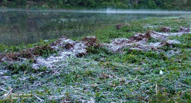Keren..! Bunga Es Berkilauan Muncul di Desa Wisata Ranupani Lumajang