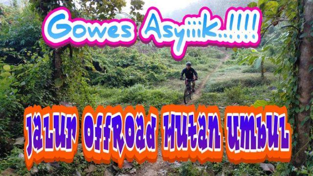 Seruuu...! Gowes Track OffRoad Alas Umbul Lumajang