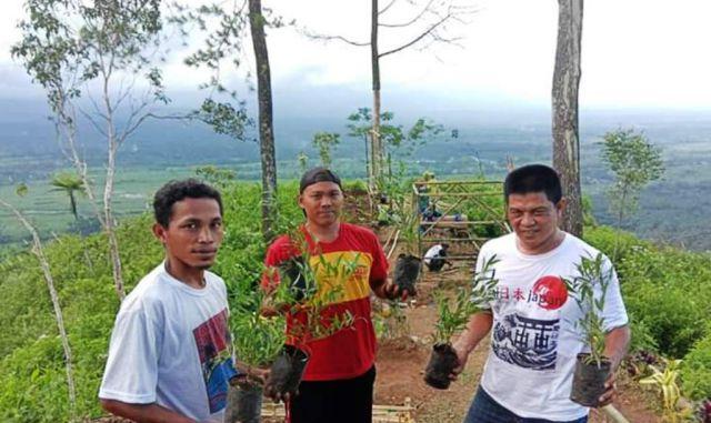 Pemuda Sumberwuluh Terus Hijaukan Puncak Gunung Wayang Lumajang