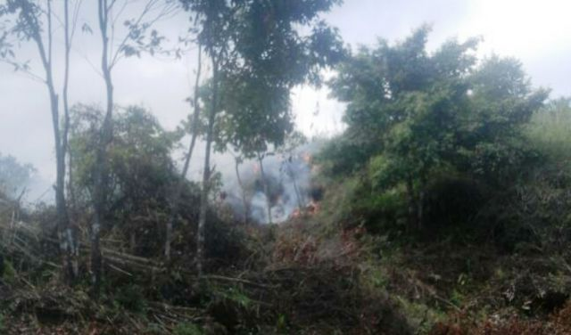 Aktivis Laskar Hijau Laporkan ke Polisi Pengrusakan Hutan Lindung Lereng Lemongan
