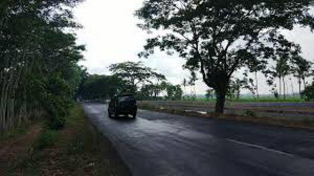 Inilah 4 Jalur Rawan Kecelakaan di Lumajang