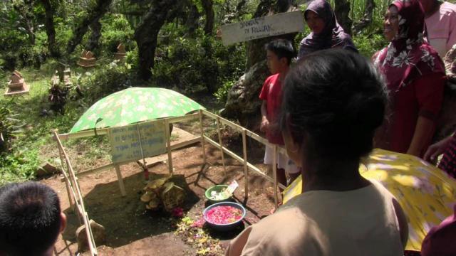 Warga Padang Heboh Penemuan Jamur Raksasa di Kuburan
