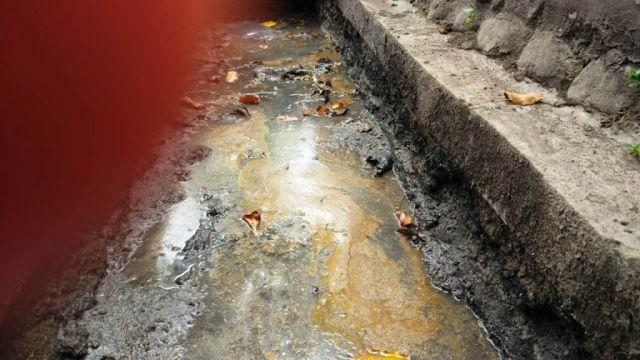 Bau Busuk Air Selokan di Jl. Veteran Lumajang Berasal dari Limbah Minyak Makanan