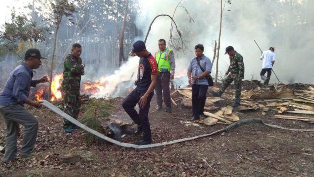 Lalai, Kabakaran Lahan Hanguskan Puluhan Pohon Sengon di Kedungjajang