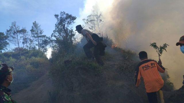 Angin Kencang, Kebakaran Semak-semak di Bromo Merembet ke B 29 Lumajang
