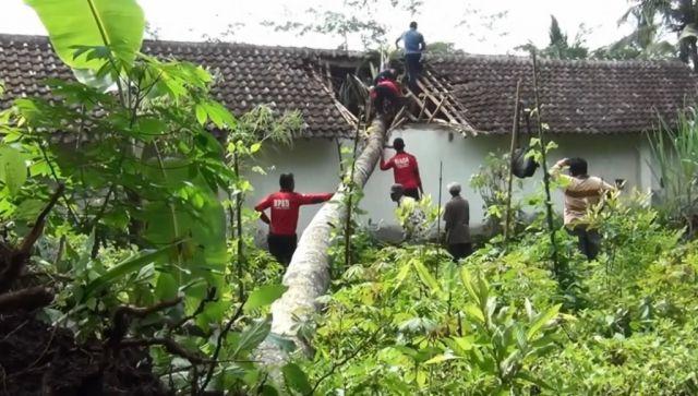 Tertimpa Pohon Kelapa, Atap Rumah Warga di Desa Bodang Rusak