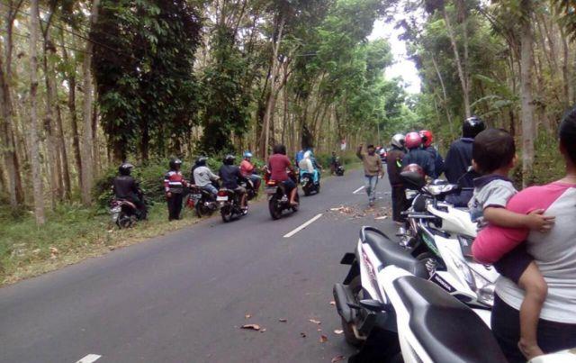 Anak Anggota DPRD Lumajang Kecelakaan Tunggal di Hutan Jatian Senduro