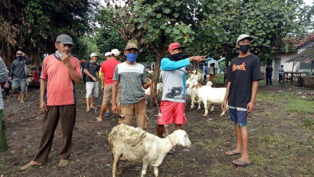 Pedagang Sambut Gembira Dibuka Kembali Pasar Hewan Lumajang