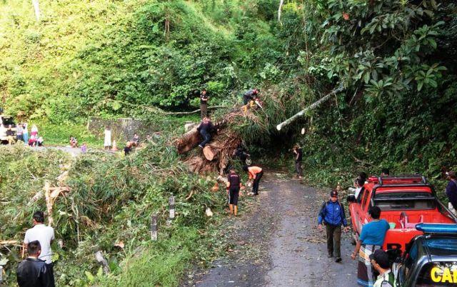 Macet Total 10 Jam, Jalur Lumajang - Malang Piket Nol Kembali Normal