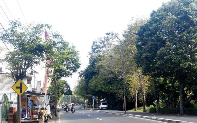Wow..!! 1,6 M, Pemkab Lumajang Bayar Tagihan PJU Perbulan