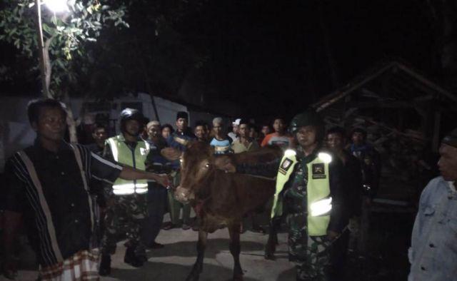 Warga dan Patroli Gabungan Gagalkan Pencurian Sapi di Randuagung