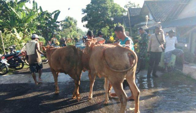 Tiga Desa di Rowokangkung Lumajang Mulai Terendam Banjir