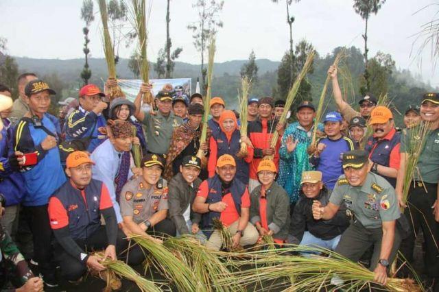Tanam Rumput Vetiver Antisipasi Longsor di Ranu Pani Lumajang