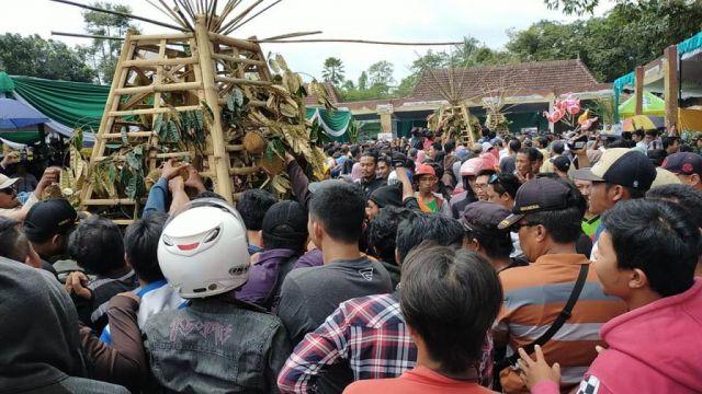 Seribu Durian Lumajang Diserbu Habis Sebelum Acara Dimulai